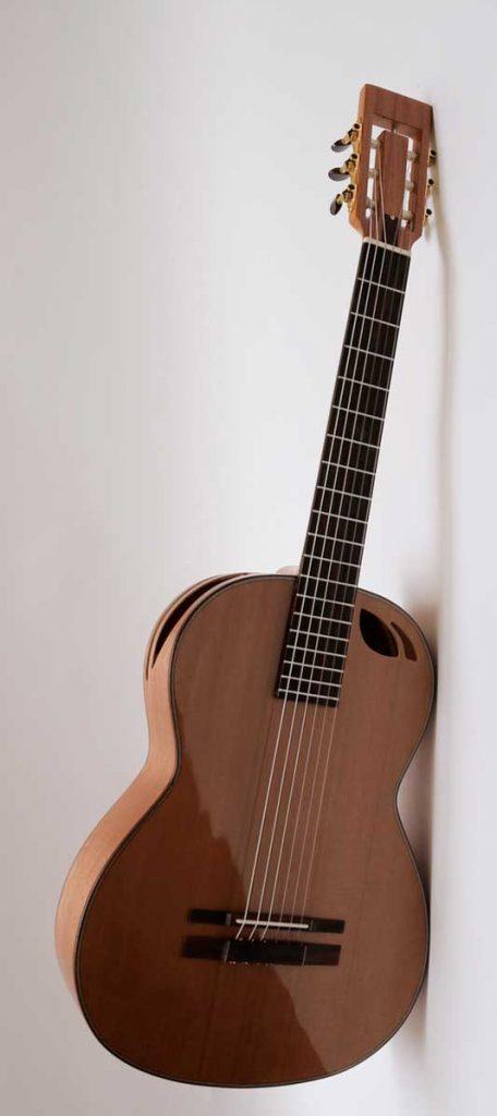 guitarra acustica modelo Ds 2 A