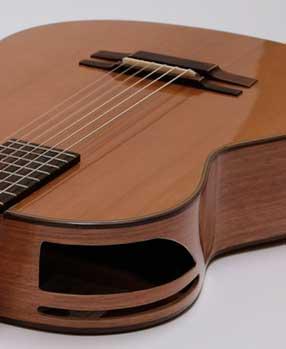 guitarra acustica modelo Ds 4
