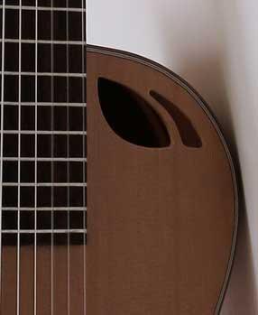 guitarra-acustica-modelo-Ds-6