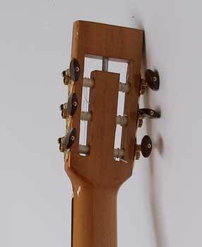 guitarra acustica modelo Ds 7