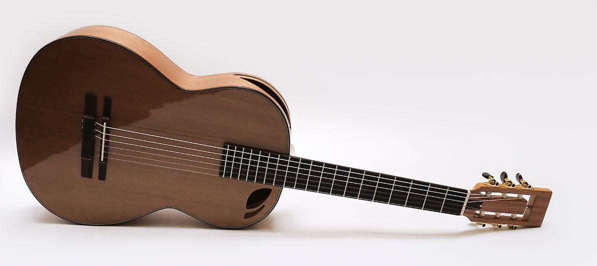 guitarra acustica modelo Ds 10 A