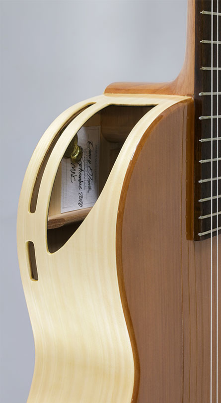 guitarra caro y topete mnc 6 A